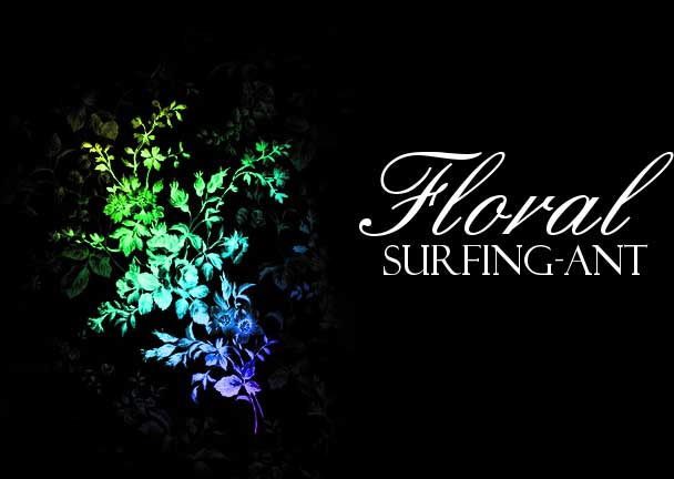 Floral Brushes by surfing ant 1500+ Free GIMP Brushes Packs for Download