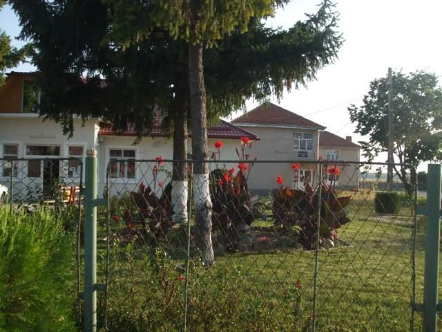Primaria si scoala din comuna Rogova