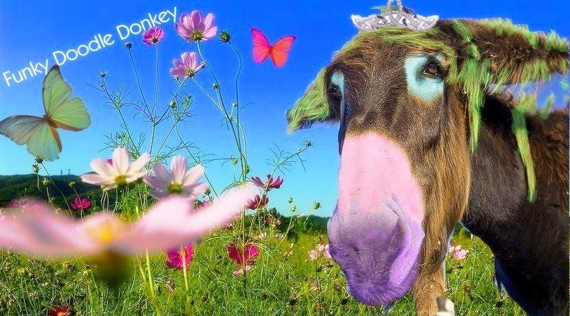 Funky Doodle Donkey