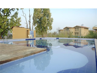 Pool at Kanha Resort