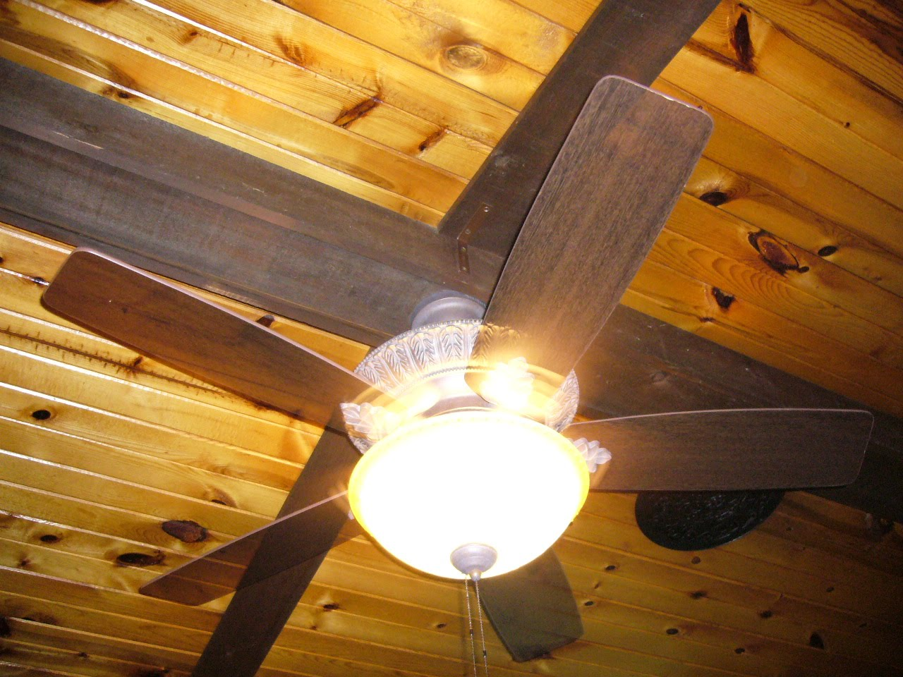 Crayola Ceiling Fan : Ditch diving mules micole and jason olgetree