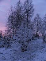 Vinteren har kommet