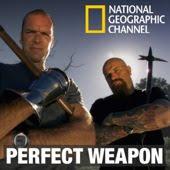 El arma perfecta