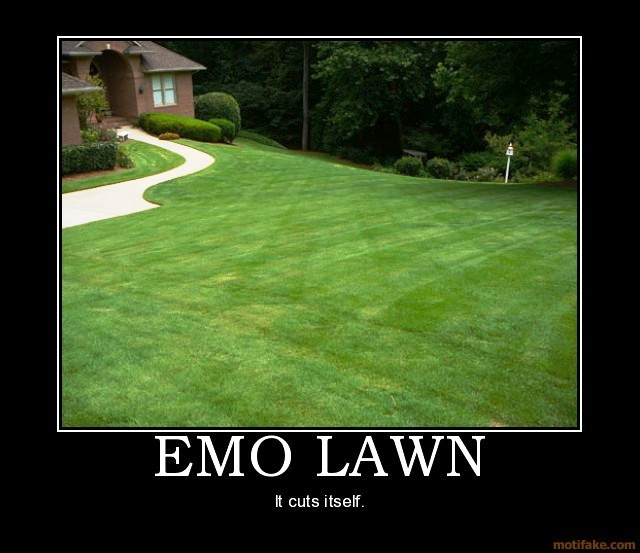 The New and Improved Funny Picture Thread - Page 4 Emo-lawn-demotivational-poster-125