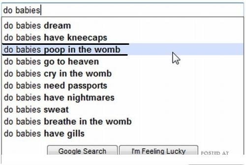 funny google search suggestions. images 12 funny google search