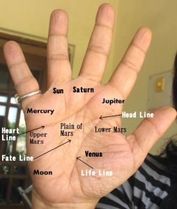 A SAMPLE HAND