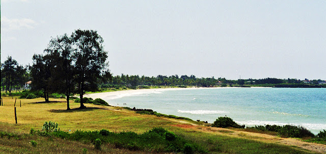 beach at Oyster Bay, Dar