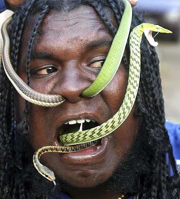 ZP: Massa serps per a tant poc encantador!