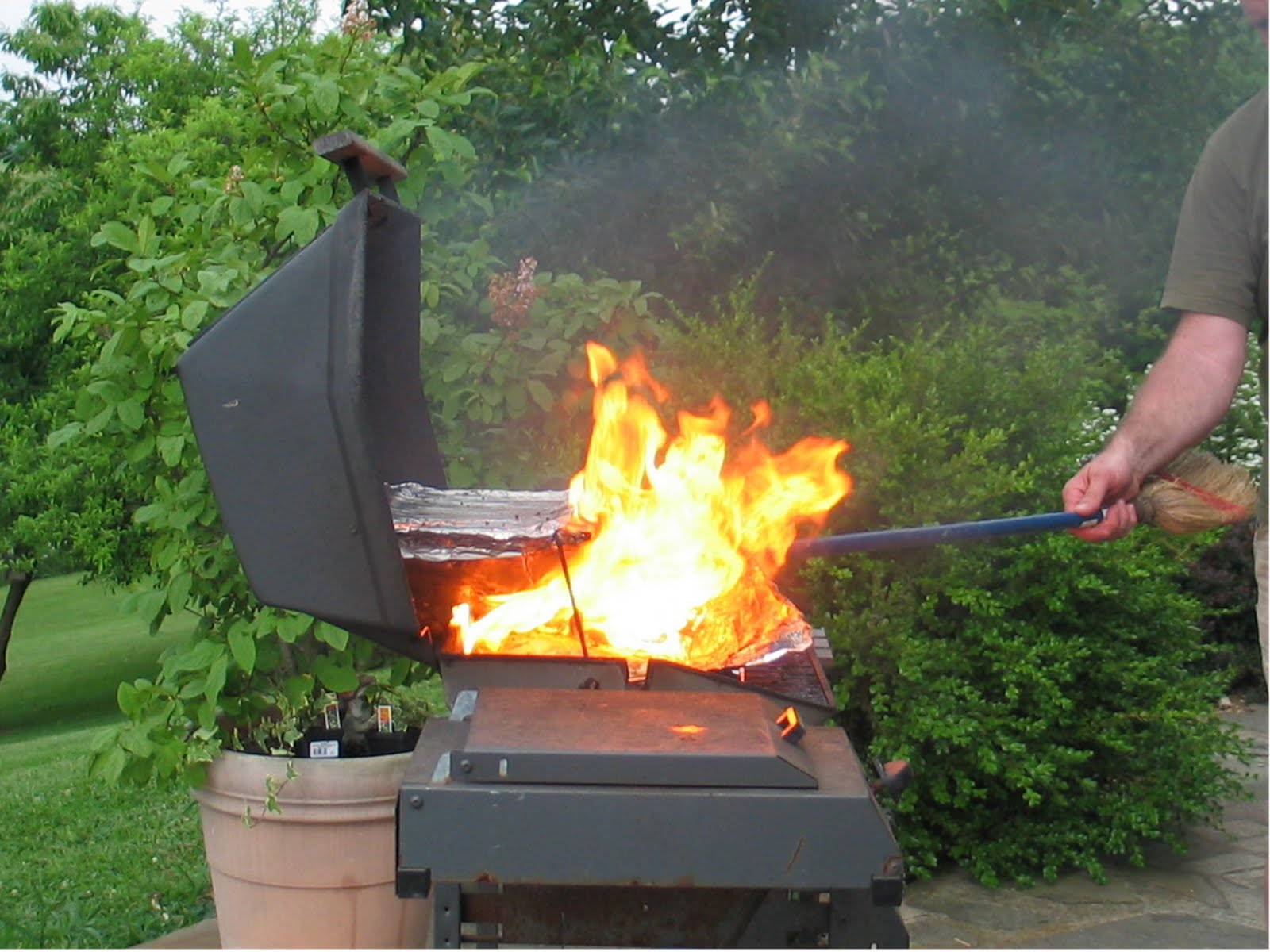 Gas Grill Fire ~ Butterfly jungle big gas beans
