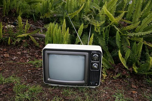 Garden Computer And TV Possible On Very Cheap