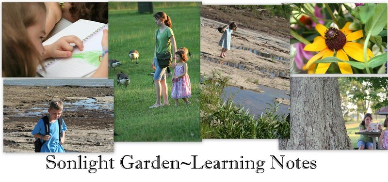 Sonlight Garden Learning Notes