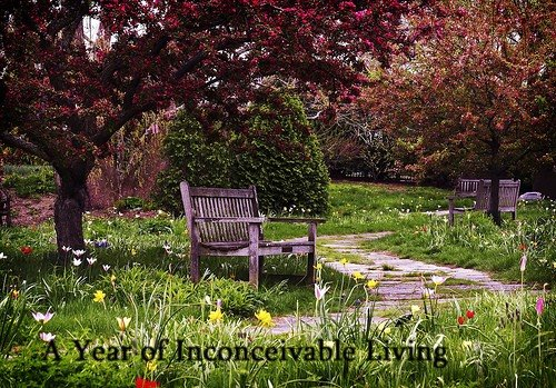 A Year of Inconceivable Living