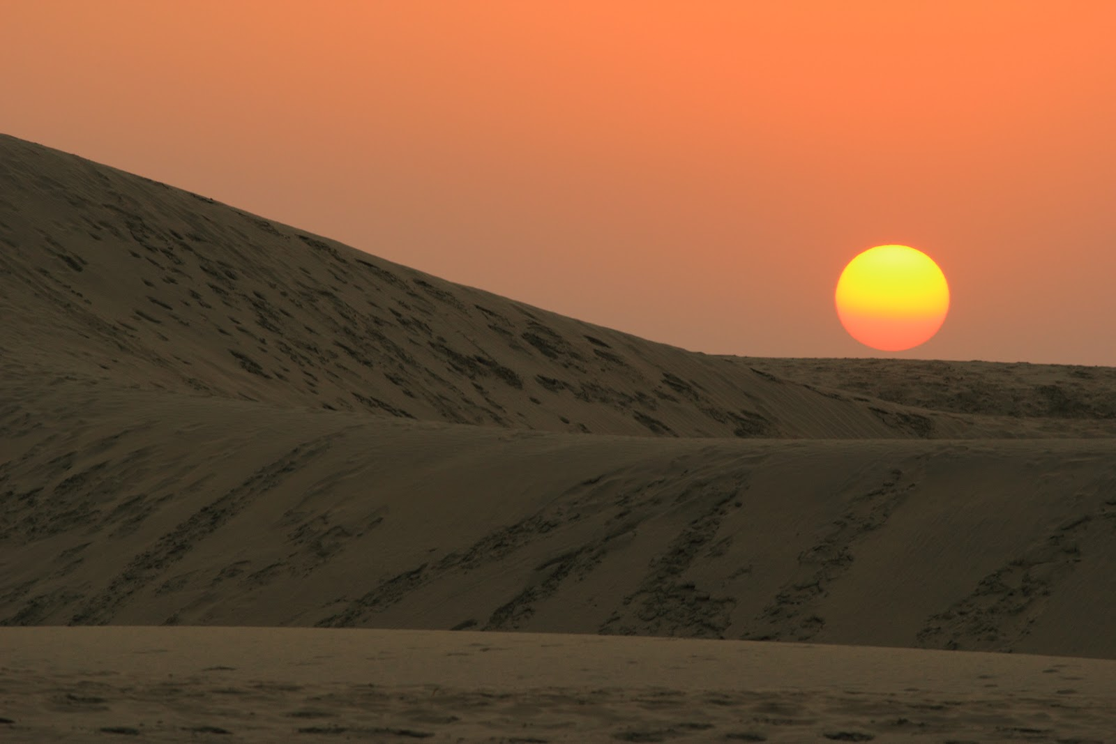 Thru The Lens Desert