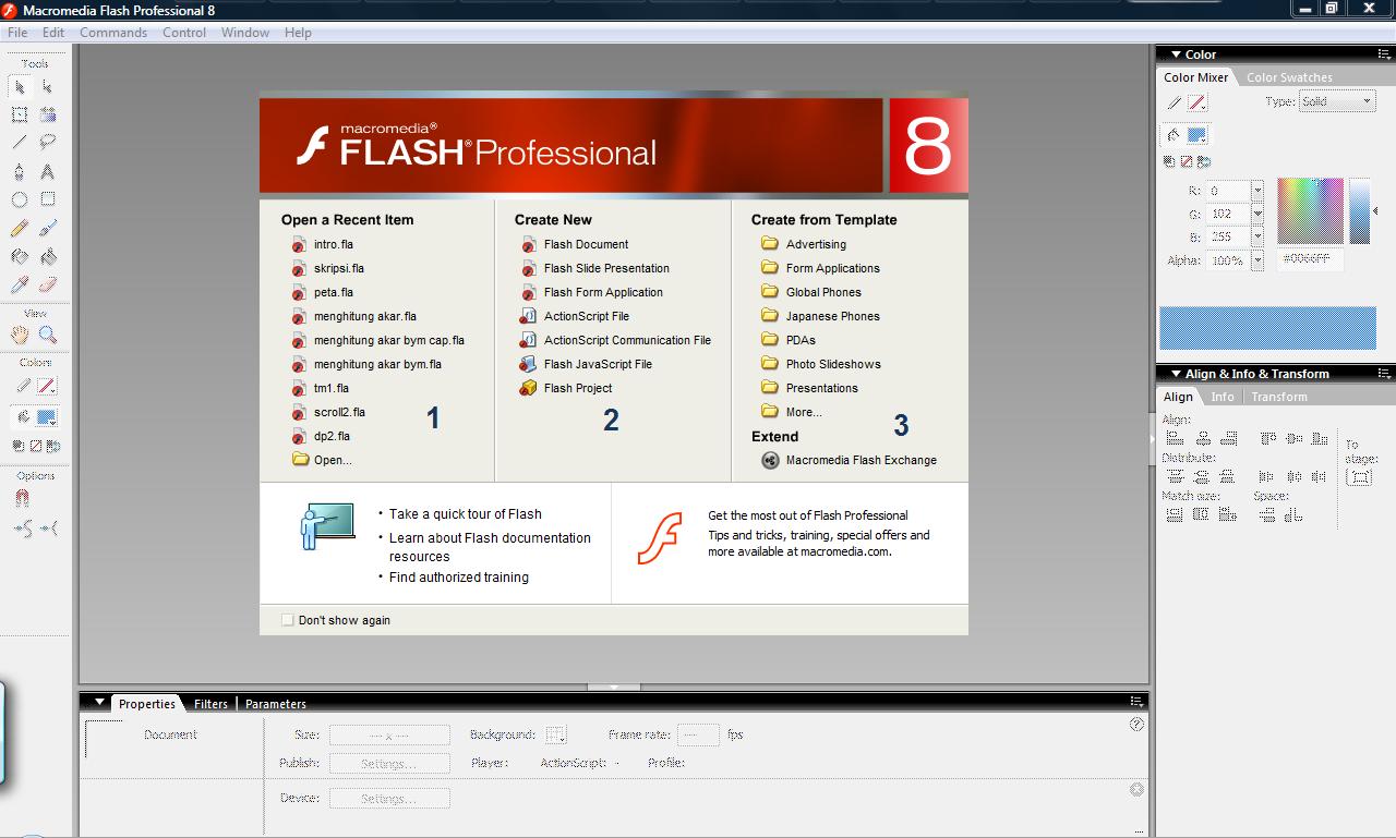 Macromedia flash mx60