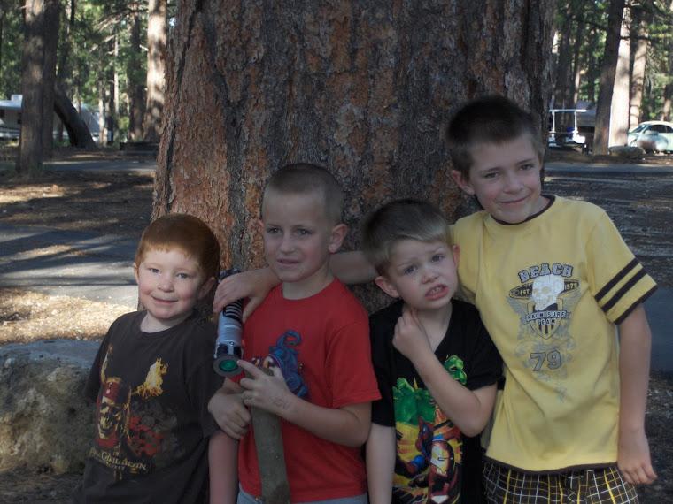 Boys, cousins at the Grand Canyon