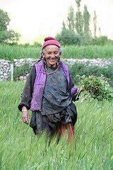 Ladakh Farmer