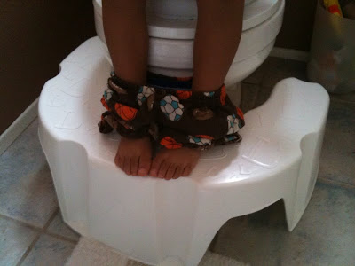 Potty Training Tips Choosing A Toddler Toilet Seat