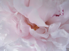 A bee staggers out of the peony. – BASHO