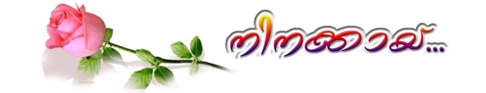 നിനക്കായ്