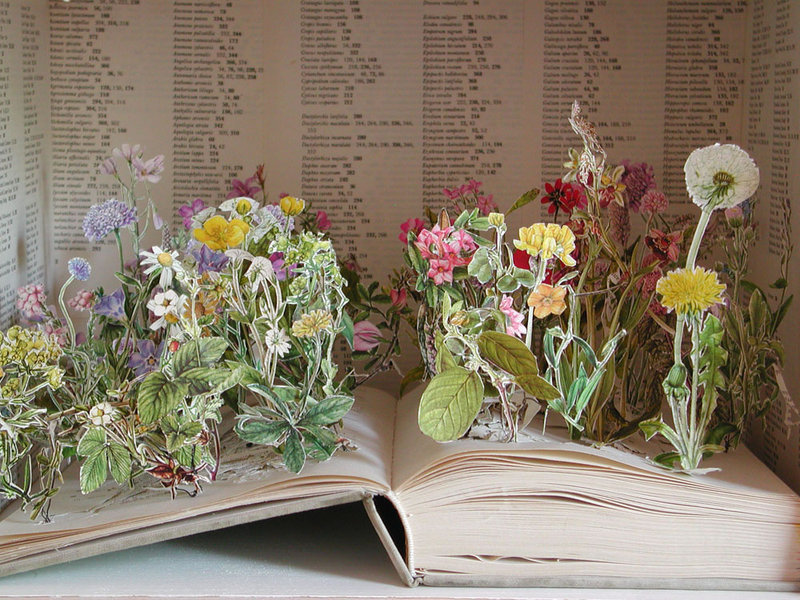 Sarah jane 39 s blog altered book project research for Books with art projects