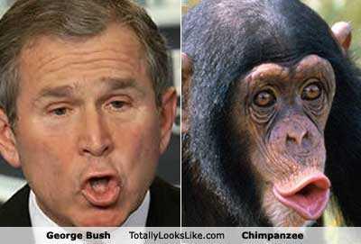 Fotos graciosas George+bush