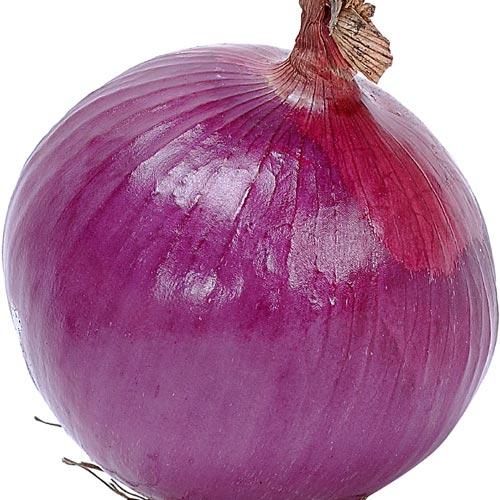 عاأأأأأأأأجل الصوره أبكت الملآين !!!!! onion2.jpg