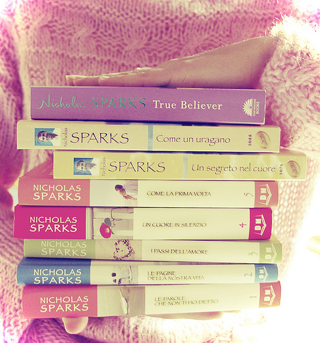 nicholas sparks the notebook book report