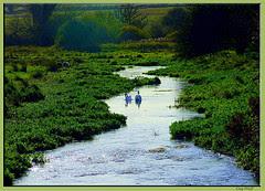 Ved elvens bredd