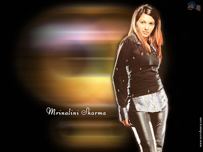 Bollywood - Mrinalini Sharma Wallpaper
