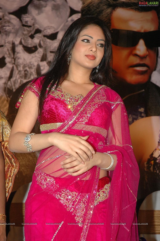 Komaram Puli hot Actress Nikeesha Patel looking attractive in Pink saree pictures