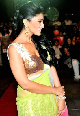 Shreya Sharan wearing Light green saree @ South Scope Cine Awards Pictures