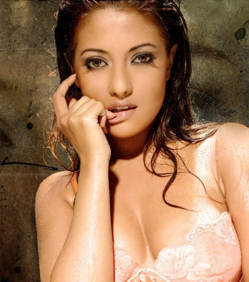 Riya Sen Mms Video Clip Of Big Boss Season