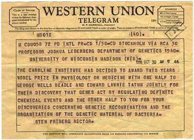 Telegrama Wester Union