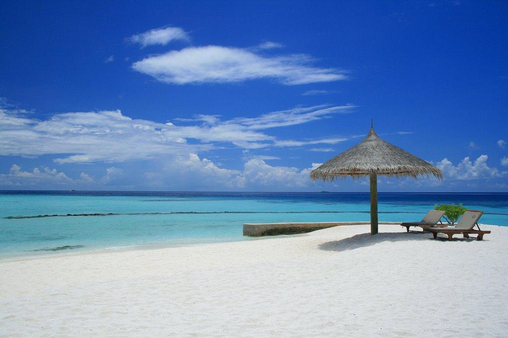 [Beach.jpg]