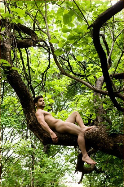 [Nature_Male+nude+in+tree.jpg]