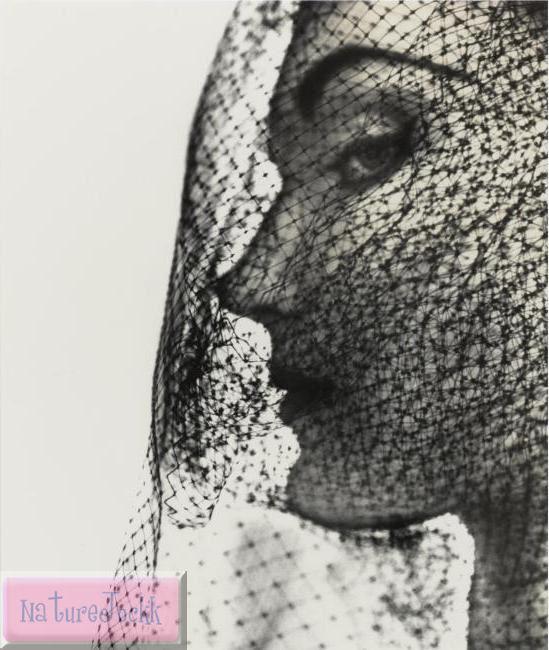 [Veiled+faces_1_Irving+Penn,+Veiled+Face+(Evelyn+Tripp),+1949.jpg]