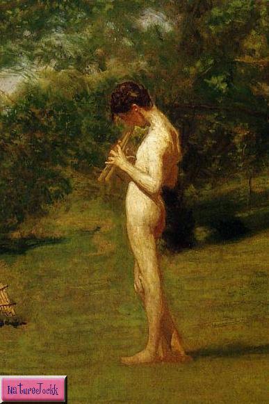 [art-Arcadia+1883+detail-722411.jpg]
