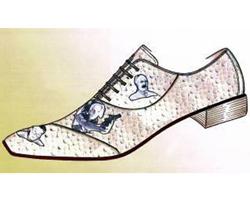 Mister zapatos