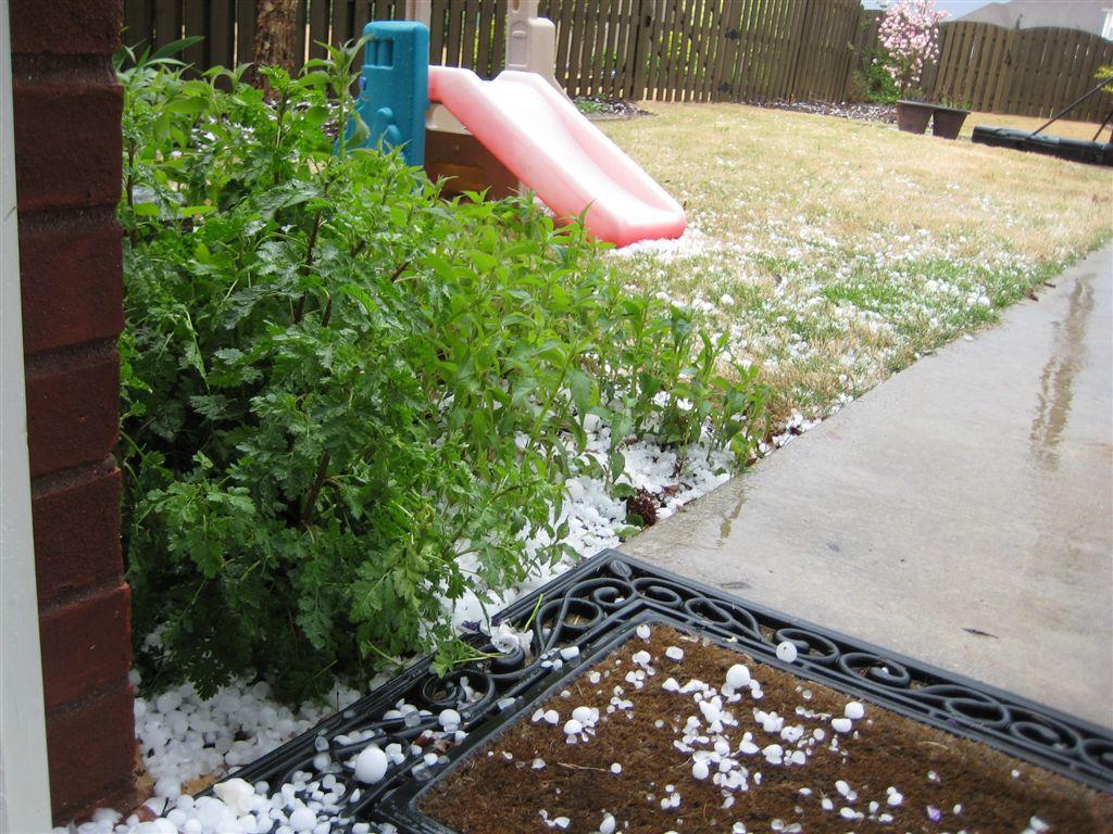 [hail1.JPG]
