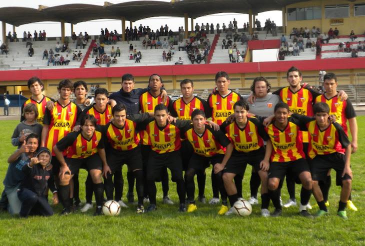 primera 2010