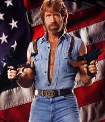 The Chuck Norris Blogothon