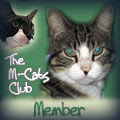 M~Cats Club