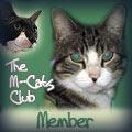 M~Cats Club