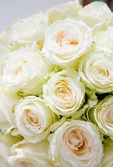 White Lovelies