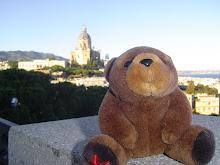 Teddy bear in Sicily