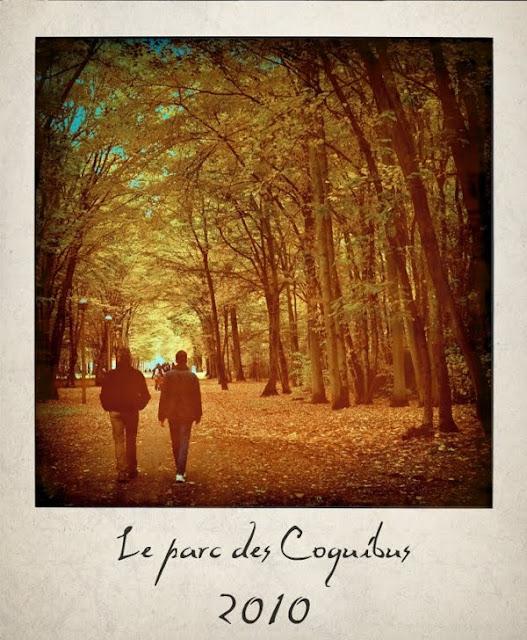 Evry Daily Photo - parc des coquibus en automne