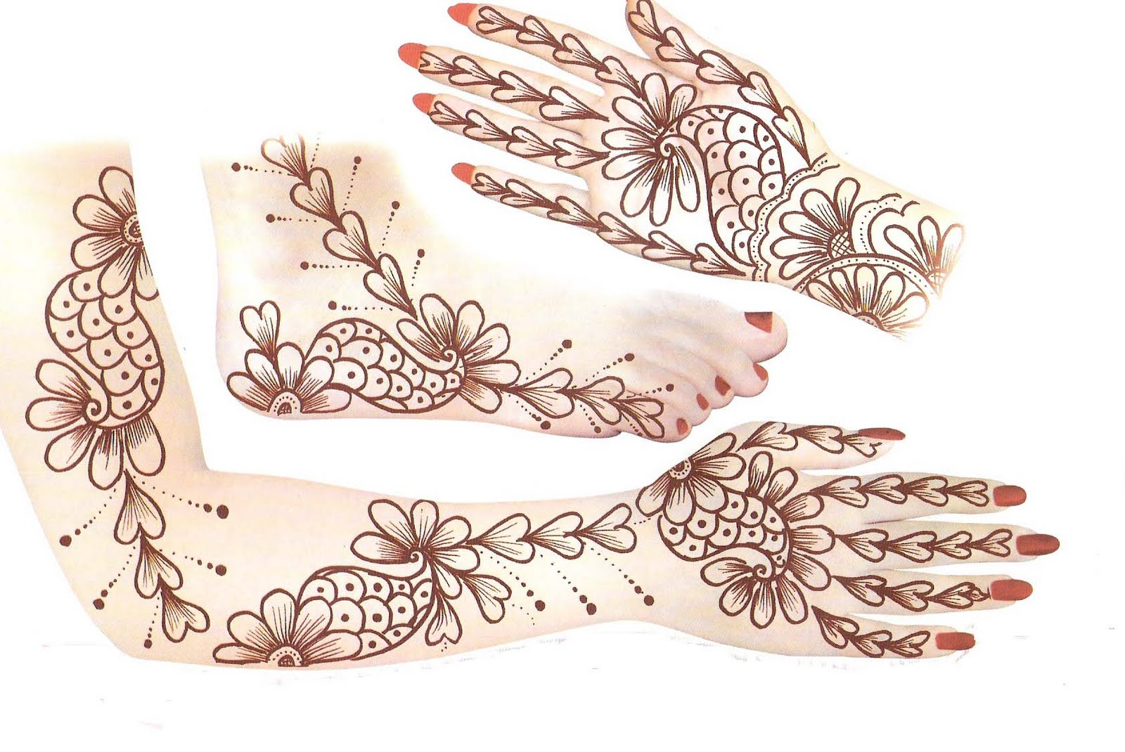 Mehandi Design On Paper Patterns Images Book For Hand Dresses For