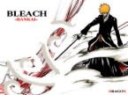 Bleach bankay