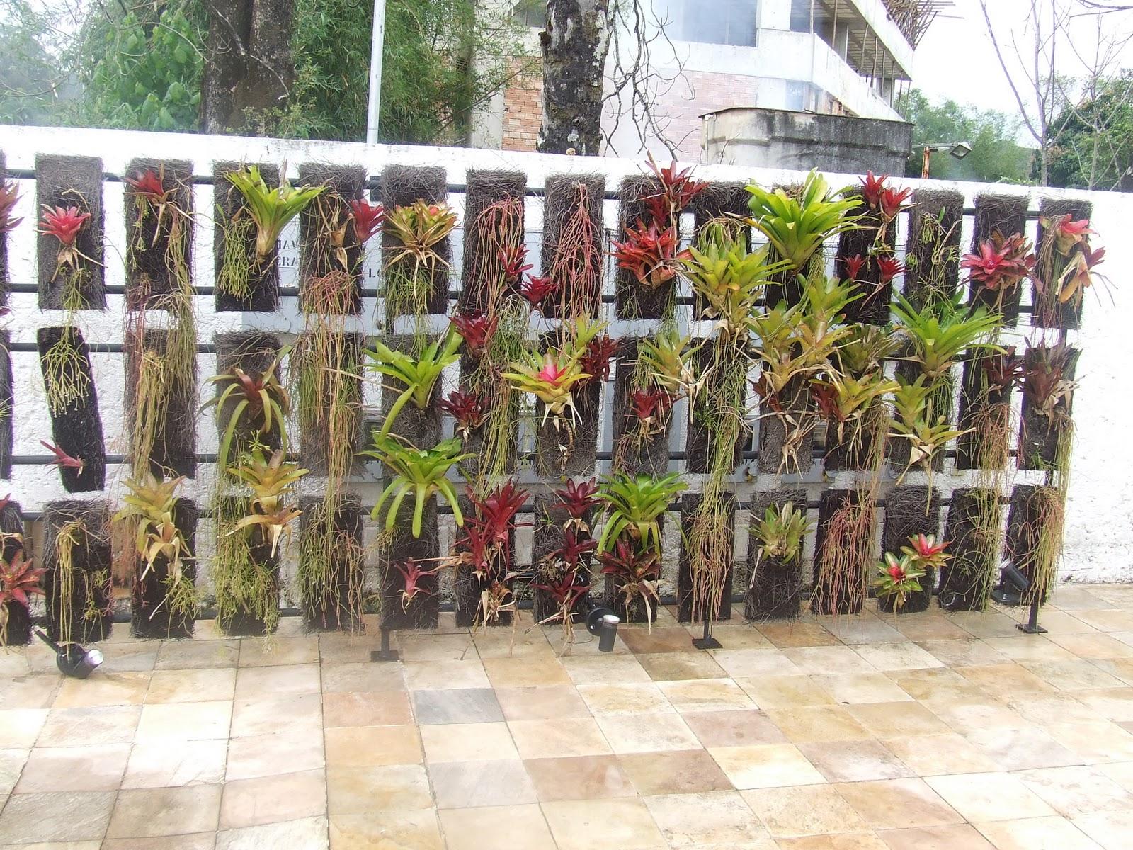 112. paisagismo fotos jardim vertical:jardim vertical  Nova Lima MG #867045 1600 1200
