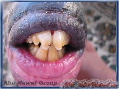 Ikan Aneh, Memiliki Bibir Dan Gigi Seperti Manusia